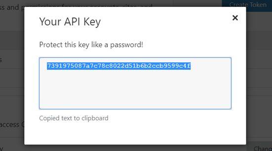 Sau đó, đi đến phần Global API Key và nhấp vào nút View.