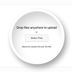 Upload file Wordpress